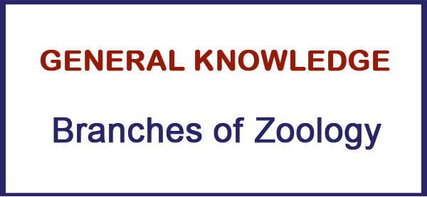 Branches of Zoology