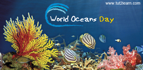 World Ocean Day Celebration