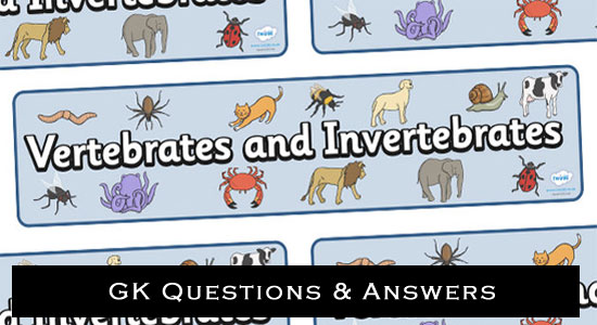 vertebrates and invertebrates questions answers