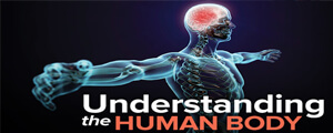 Human Anatomy & Physiology Questions